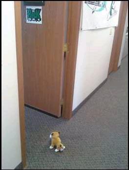 Tucker going into the rock studio
