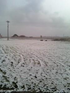 Snow outside the HCR studios Monday morning